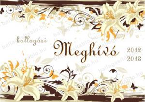 meghivo 12 front ballagasitablo hu online